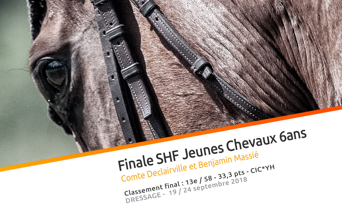 Comte Declairville video Finale 2018 SHF